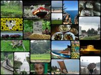 SriLankacollage pt